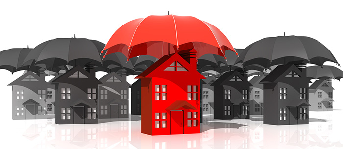 An Investor's Guide to Understanding Insurance